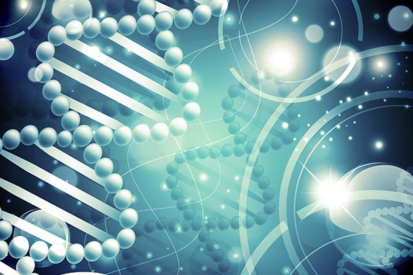 Biochemical Society Transactions.