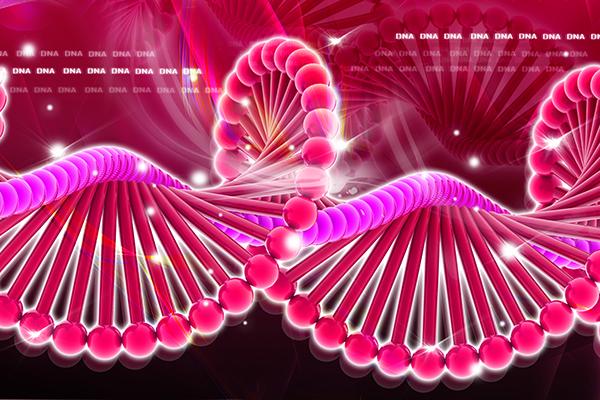 Как белки Cas12e режут ДНК?